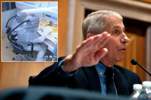Fauci Asks Beijing To Release Medical Records Of Wuhan Lab Workers Who Fell Sick In 2019