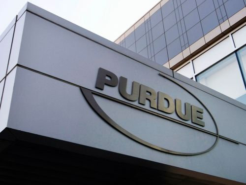 Opioid-maker Purdue Pharma's bankruptcy filing shines a rare light on a system criticized for raising US drug prices
