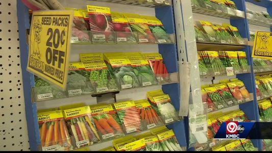Garden centers seeing more people interested in vegetable gardens