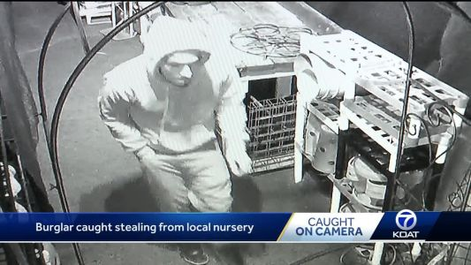 Burglar targets local nursery, caught on camera
