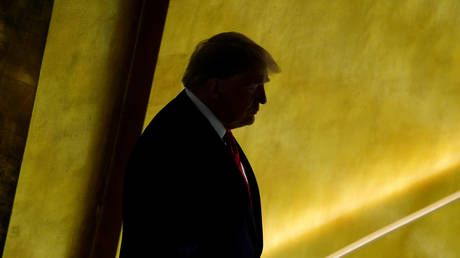 Trump will be only world leader to address UN in person in September as others to send videos - envoy