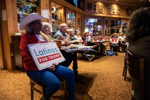 GOP builds on Trump's Latino gains in South Texas