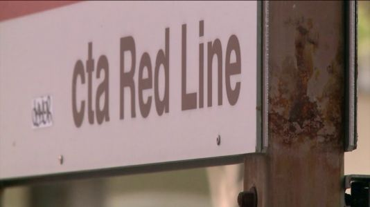 Police: Male pushed on Red Line tracks, struck by train following physical altercation