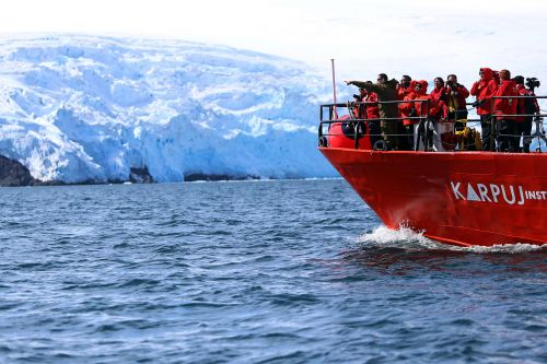 Antarctic ice shelves could cure cancer, predict climate change