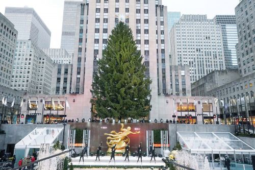 Everything NYC wants you to do to see the Rock Center Christmas tree amid COVID-19