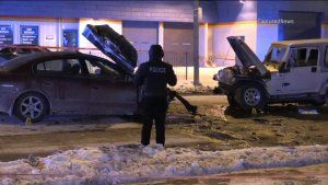 Cook County Sheriff's Deputy Killed in Crash