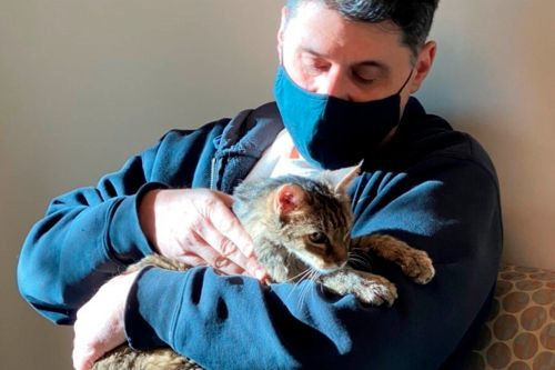 Cat reunited with owner after going missing for 15 years