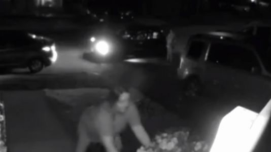 Bandits steal blooming flower pots from Mass. homes