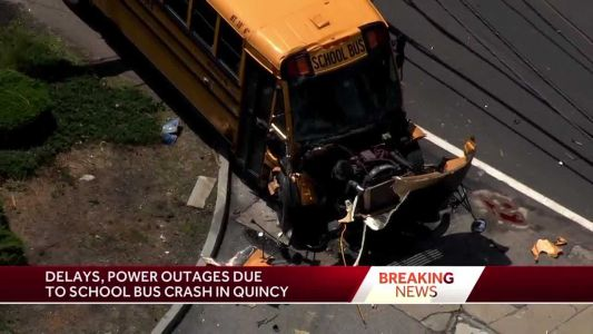 School bus tears down pole, wires in crash