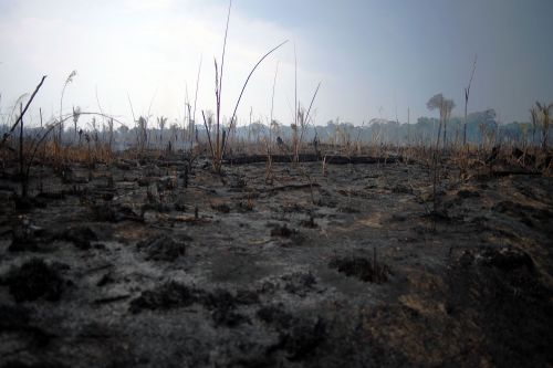 After Brazil's Summer of Fire, the Militarization of the Amazon Remains