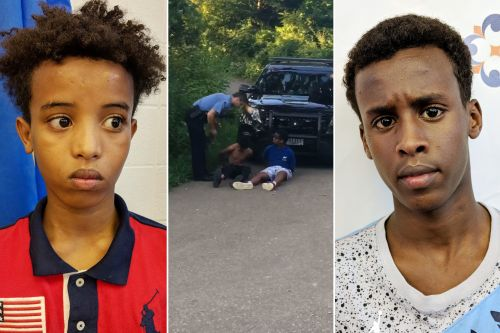 Black teens say they feared for lives as cop pulled gun on them
