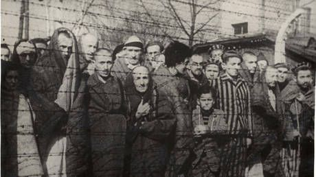 'People want to know the truth': Red Army veteran speaks out on liberation of Auschwitz & distortions of history