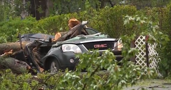 11-year-old girl killed when tree falls onto car during Northeast storm