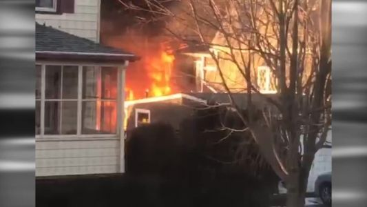 Family dog wakes up, alerts family to fire that destroyed home