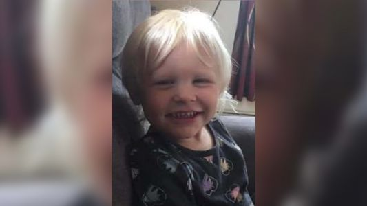 Abby Koch, 3, Missing After Chasing Dog Into Woods In Western Wisconsin