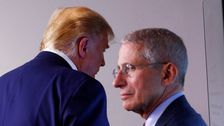 Dr. Fauci: 'I Don't Understand' Why The Entire Country Isn't Under Stay-At-Home Orders