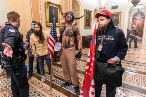Judge releases Trump appointee charged in Capitol riot