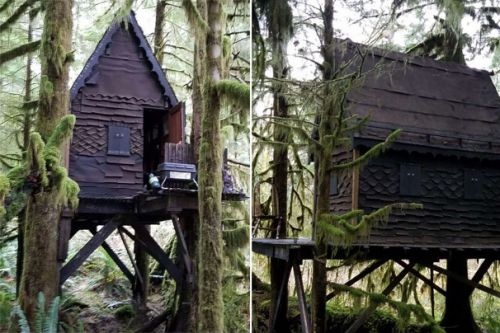Man who had treehouse filled with child porn gets 9 months in jail