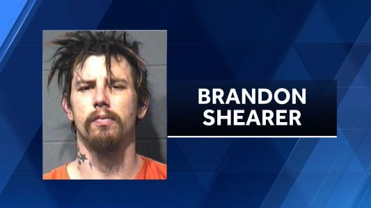Deputies: Man beat dog to death with hammer