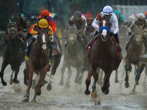 Preakness Stakes 2018: Everything you need to know about the 8 horses running in the second leg of the Triple Crown
