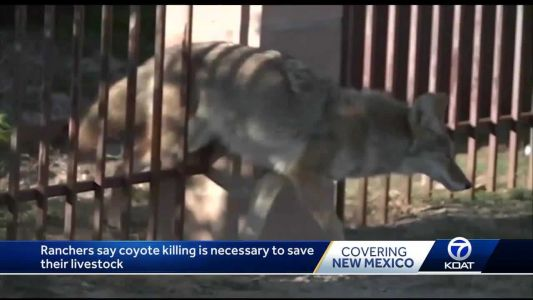 Coyote dumping ground found in Valencia County