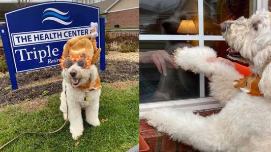 Therapy dog visits retirement community through window in Colerain Township