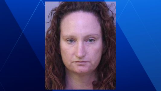 Lakeland woman charged in fatal hit-and-run