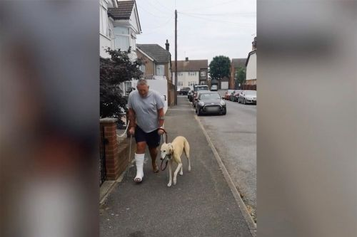 Dog imitates owner's limp in heartwarming show of 'sympathy'