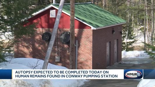 NH officials: Remains found at wastewater plant were 'not viable' fetus