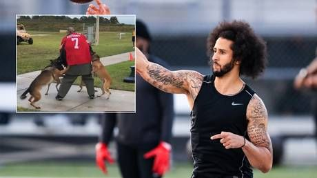 US Navy vows to investigate after military dogs MAUL Colin Kaepernick stand-in at demonstration event