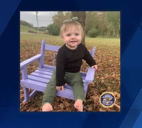 Amber Alert issued for missing toddler last seen almost two months ago