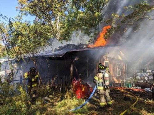 Cecil County woman, dog die in house fire