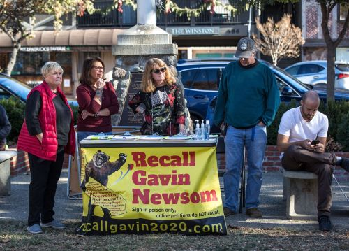 An ex-cop, anti-vaxxers, and Mike Huckabee: The most prominent people driving the recall of California Democratic Gov. Gavin Newsom