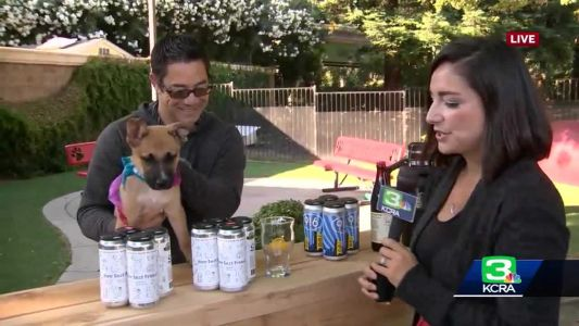 Front Street Animal Shelter to host second annual Brewfest