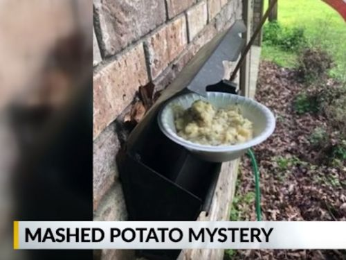 A town is being haunted by mysterious mashed potatoes - and no one knows who is putting them there