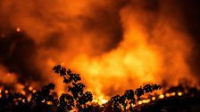 Trump administration rejects California's request for financial help with wildfires
