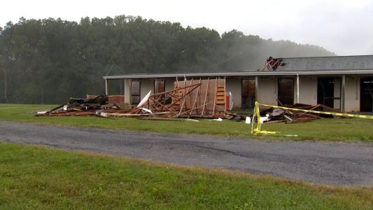 Strong winds rip roof off stable with horses inside