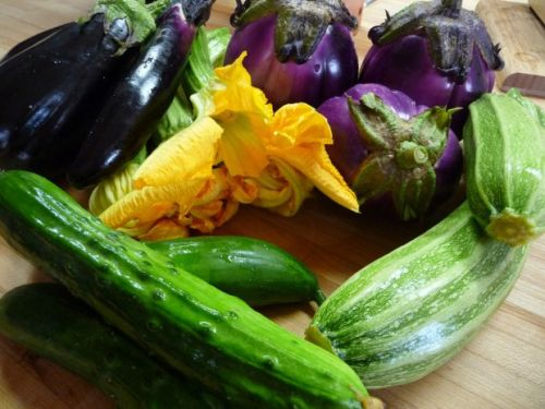 Harvest your garden's bounty for future feasting