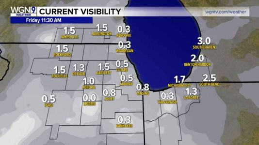 Dense Fog Advisory until Friday evening for a portion of the Illinois Chicago area along and south of Interstate-80