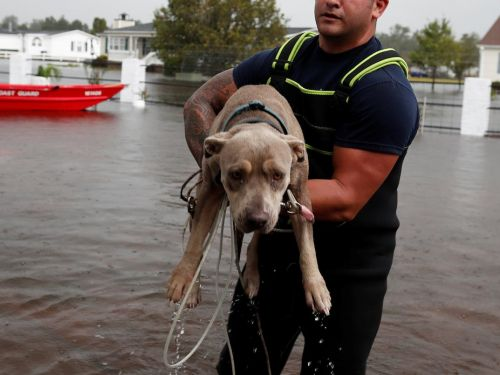 7 dangerous mistakes to avoid during a hurricane