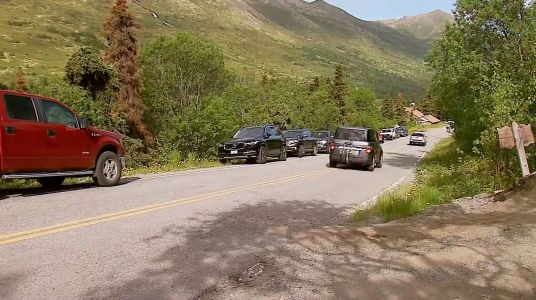 A brown bear killed a hiker. Then a volunteer searching for him was mauled