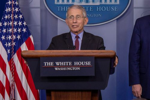 Dr. Anthony Fauci says it's likely coronavirus will become 'seasonal'