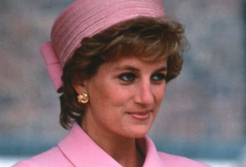 Pal suggests there was a conspiracy to derail famed Diana biography