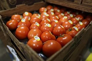 US moves toward agreement on Mexican tomatoes
