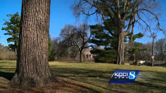 City of Des Moines again offering free trees to residents