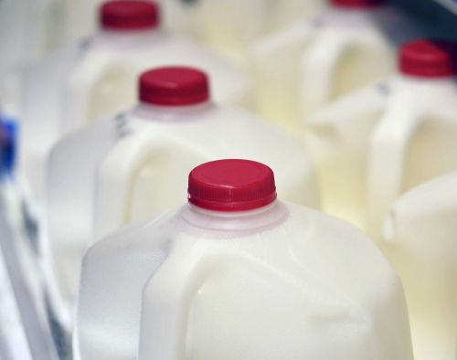 America's largest milk producer files for bankruptcy amid drop in demand