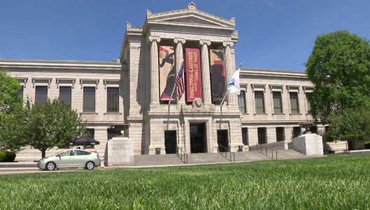 Teachers accuse Museum of Fine Arts staff of mistreating minority students
