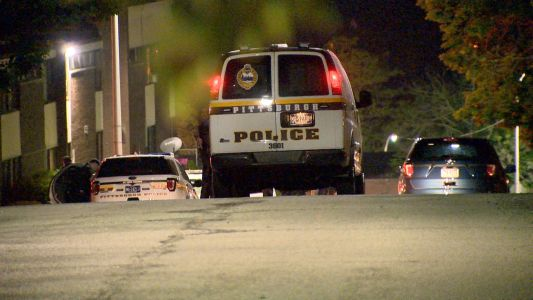 A woman is recovering after being shot in the head