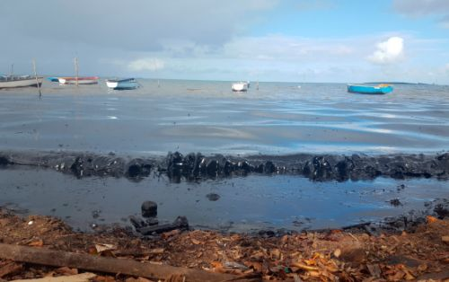 Rescue Efforts Underway in Mauritius to Contain Growing Oil Spill Before Stranded Ship Breaks in Two