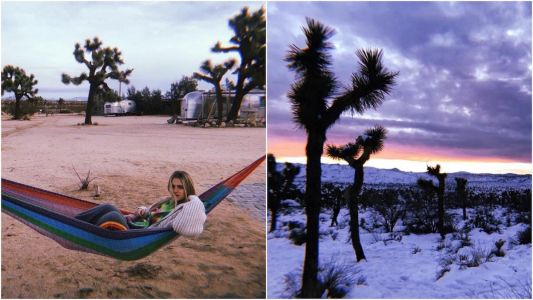 I spent the start of the new decade at Joshua Tree, and nothing has ever made me feel so lucky to exist
